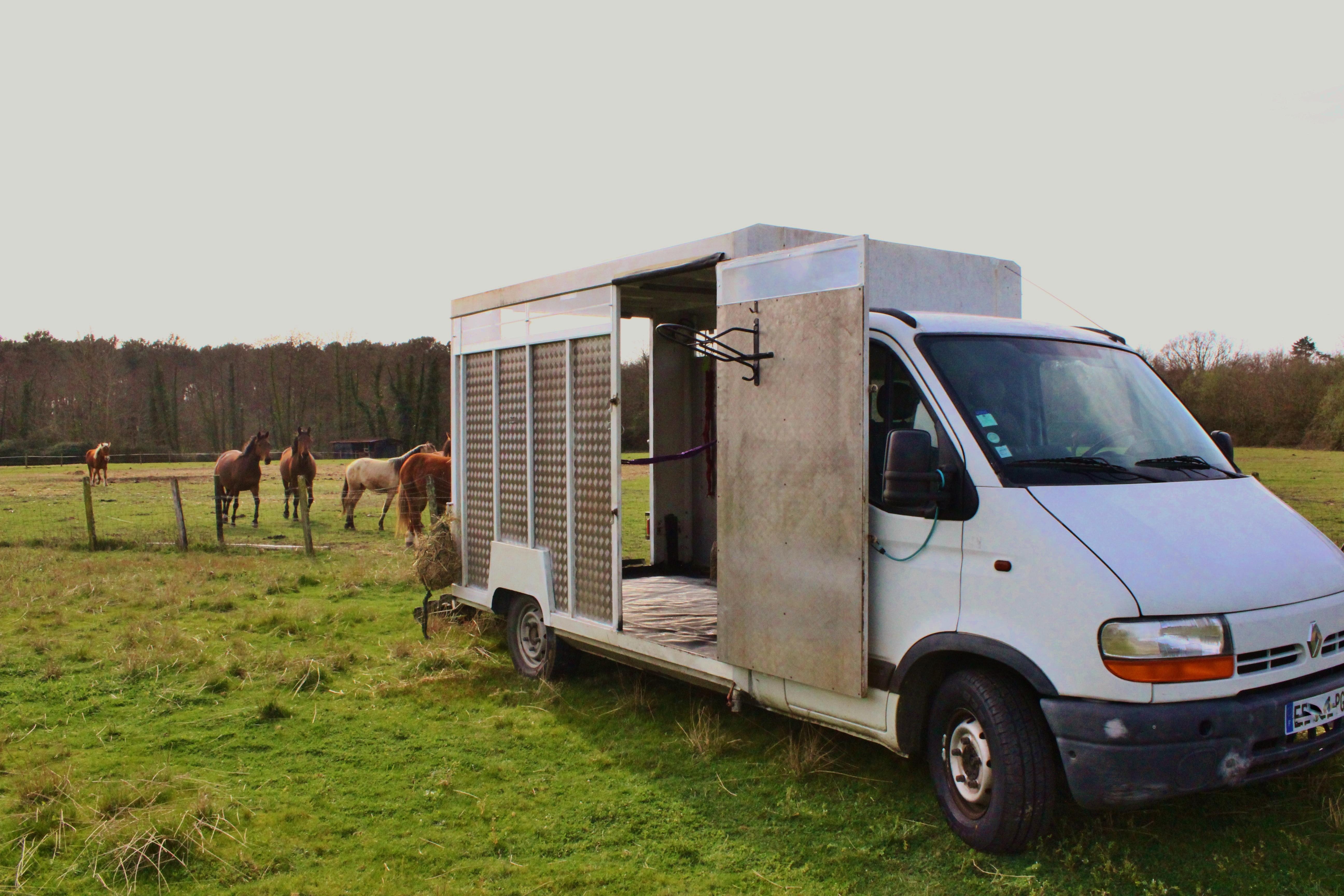 un van pour chevaux location auto clermont. Black Bedroom Furniture Sets. Home Design Ideas