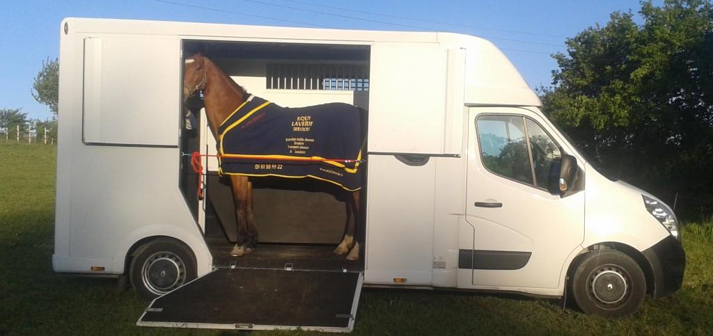 transport chevaux permis b location auto clermont. Black Bedroom Furniture Sets. Home Design Ideas